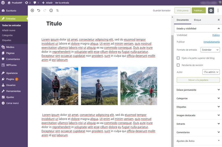 Panel Añadir nueva entrada en WordPress