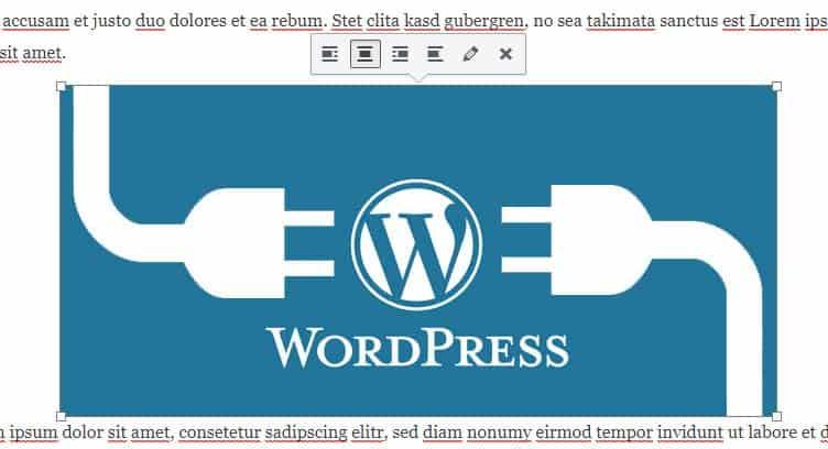 ¿Cómo editar una imagen en WordPress?