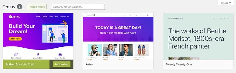 Elegir el tema de WordPress para su sitio web